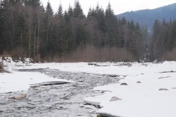 2015-01-28-goverla-21